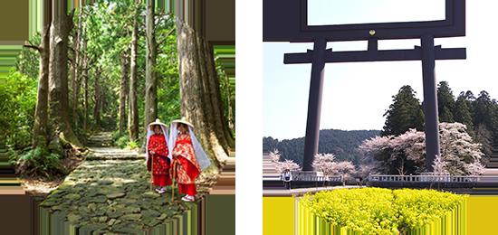 熊野古道大門坂・熊野本宮大社