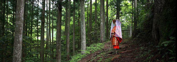 熊野古道中辺路・発心門王子付近